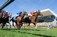 Sagaronne Raising Hopes For JJ Atkins Group 1