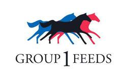 Group One Feeds