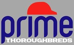 Prime Thoroughbreds